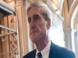 Steve Hilton: Mueller's Probe Is 'distracting'