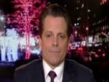 Scaramucci Talks America's Economic Successes Under Trump
