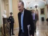 Schumer Blinks: Democrats End Government Shutdown