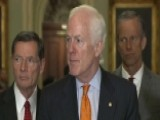 Senate Republicans Hold News Conference From Capitol Hill