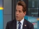 Scaramucci Reacts To Democrats' Tactics To Attack Trump WH