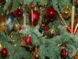 Tips To Find The Perfect Christmas Tree