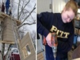 Teen Ordered To Remove Treehouse Project