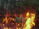 Tens Of Thousands Flee Wildfires In Israel