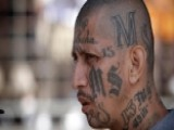 Trump Administration Goes After MS-13 Gang
