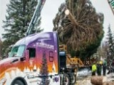 Trucker Who Drove Capitol Christmas Tree To DC Speaks Out