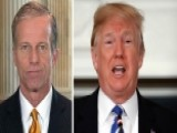 Thune: Trump Put Out A Good Faith Effort On Immigration