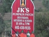 Toddler Dies From Pumpkin Patch Accident In Nebraska