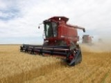 US Farmers Being Squeezed By Overseas Competition