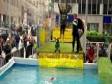 Ultimate Air Dogs Show Off Their Distance Jumping Skills