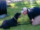 Veteran Reunited With His Bomb-sniffing Dog