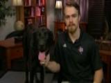 Veteran Goes To Bat For His Injured Service Dog
