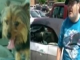 Veteran Arrested For Trying To Save Dog
