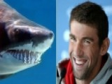Viewers Angry, Feel Misled After Phelps Vs. 'shark' Race
