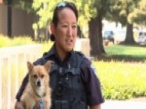 Vacaville Officer Adopts Dog Rescued From Nelson Fire