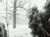 Weather Flash