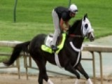 What Goes Into Training A Kentucky Derby Horse?