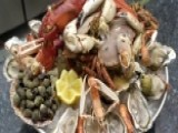 World Wildlife Fund Warns Seafood May Be Gone By 2048