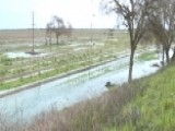 Winter Rains Hammer California Farmers