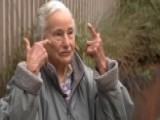 Yellow Jackets Sting 94-year-old Over 70 Times
