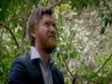 Review With Myles Barlow: Treechange, Art, Sympathy