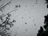 First Snow In Hamburg 10.12.2011 GH2@66Mbit