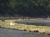 Reflections From Bangladesh - Sangu River