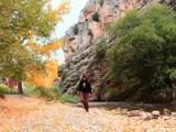 Soñando Albarracin