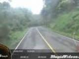 Wild Road Block