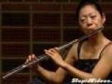 Butterfly Loves Flute Solo