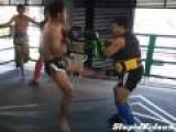 Fighter Unleashes Barrage Of Kicks