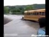 School Bus VS Nature