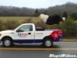 Amazing Eagle Steve Commercial