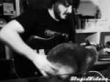 Cat V. Guitar
