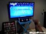 Dog Watches Tennis