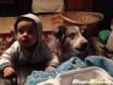 Dog Says 'Mama' Before Baby