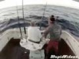 Fish Jumps Into Boat
