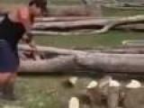 Human Machine Splits 35 Logs In 35 Sec