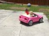Little Kid Drifting In Pink Mustang