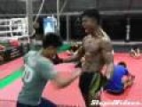 Muscle Punching Training