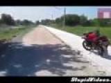 Monkey Vs Motorcyclist