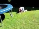 Soapy Trampoline Claims Another Victim