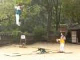 Seesaw Stunts From South Korea