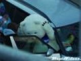 Sochi Mascot Can't Get In Car