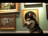 MISHKA The ART CRITIC