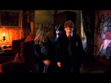 Harry, Ron And Hermione Meet Fluffy